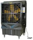 Охладитель воздуха Master BC 220 в Калининграде